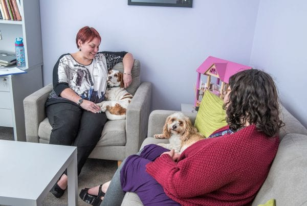 Allied Health Support Services Link Round Up Blog
