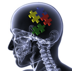 Allied Health Support Services Puzzle Pieces Skull Image
