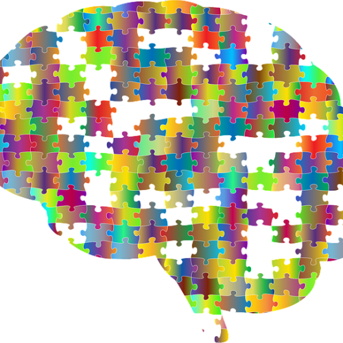 Allied Health Support Services Puzzle Brain Image