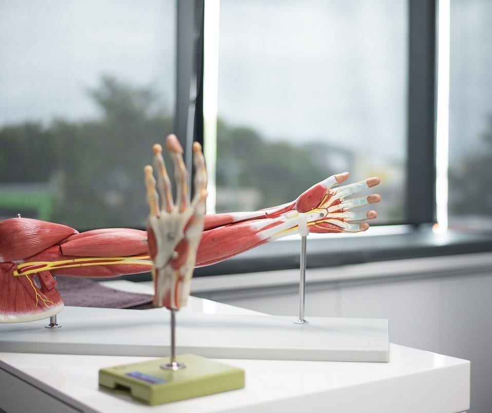 Active Hand Therapy