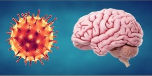 Covid19 and brain